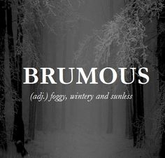 Brumous (adjective) foggy, wintry, and sunless Unusual Words, Weird Words, Rare Words, Unique Words, Cool Words, Fancy Words, Pretty Words, Beautiful Words, Big Words To Use