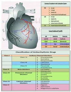 Discover thousands of images about ekg interpretation cheat sheet Cardiac Nursing, Pharmacology Nursing, Nursing Information, Nursing School Notes, Critical Care Nursing, Respiratory Therapy, Emergency Medicine, Clinique, Nurse Life