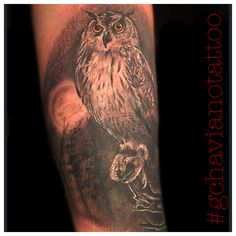 Realist owl black and gray tattoo