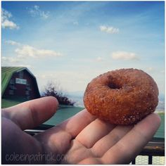 apple cider donuts carter mountain orchard Charlottesville, Virginia Apple Cider Donuts, Bachelorette Weekend, Charlottesville, Foods To Eat, Upcoming Events, Bagel, Yummy Treats, Virginia, Places