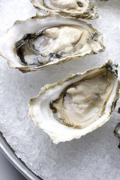 I miss the oyster selection in Seattle......which has the greatest selection anyone could ask for......
