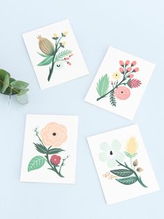 Botanical cards by Rifle Paper Co -- would make a pretty tattoo