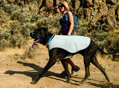 Ruffwear Swamp Cooler™ Dog Cooling Vest    Help your dog beat the heat with this innovative cooling vest.  Just soak it in cold water, wring it out, and fasten around your dog. Evaporative cooling (like an actual swamp cooler) exchanges the dog's heat with the coolness of the stored water in the coat to keep them comfortable and ready to run that extra mile.   If you love dogs, please visit whatcanwe.org