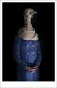 Miguel Vallinas's dressed-up animals #photography #art #animals