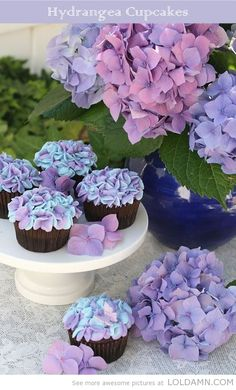 hydrenga top cupcakes | Top 10 Awesome Cupcakes you can actually make at home. (with recipes)