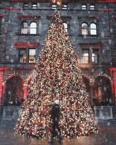 Lotte New York Palace Manhattan, Palace, Christmas Tree, New York, Holiday Decor, Travel, Home Decor, Teal Christmas Tree, New York City