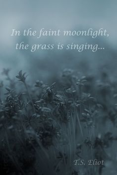 """""""In the faint moonlight, the grass is singing..."""" The Waste Land by T.S. Eliot"""