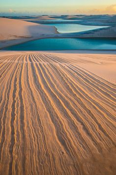 Dune patterns and freshwater lakes, Lencois Maranhenses National Park, Brazil. Tom Till Photography