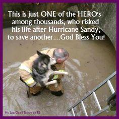 Hurricane Sandy hero