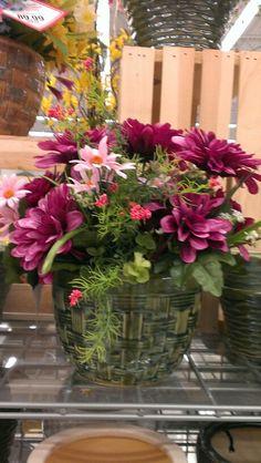 Spring flower pots...Robin Evans
