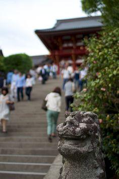 鶴岡八幡宮 by hfunai, via Flickr