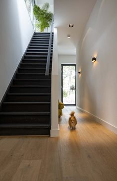 Stairs, Wood, House, Home Decor, Stairway, Decoration Home, Woodwind Instrument, Home, Room Decor