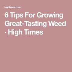 6 Tips For Growing Great-Tasting Weed · High Times