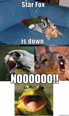 Star Fox is down!