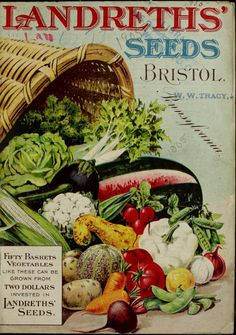 1905 - Landreths' Seeds, catalogue  Cornucopia styled spread to the artwork!