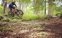 Hamsterley XC #mtb #mtbbike #mountainbike #mountainbiking #bike #cycling #specialized #specializedbikes #specializedenduro #enduro #jump #hamsterleyforest by neilbranthwaite
