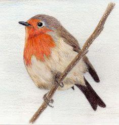 motive tattoo idea tattoo robin tattoos private watercolor tattoo bird ...