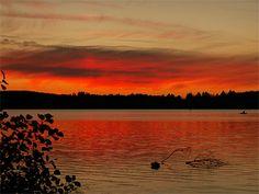 Coucher de soleil du bord du lac des settons - Les Settons - Morvan - Bourgogne - France