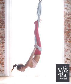 DandA Flying Yoga | D&A Flying Yoga | Aerial Yoga