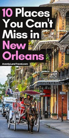 New Orleans Vacation, Visit New Orleans, New Orleans Travel, New Orleans Louisiana, Nola Vacation, Trip To New Orleans, Vacation Ideas, New Orleans Tourism, New Orleans With Kids
