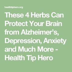 These 4 Herbs Can Protect Your Brain from Alzheimer's, Depression, Anxiety and Much More - Health Tip Hero