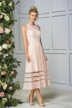 Jasmine Bridal is home to 8 separate designer wedding labels as well as two of our own line. Jasmine is the go to choice for wedding and special event dresses. Lace Tea Length Dress, Tea Length Bridesmaid Dresses, Tea Length Wedding Dress, Tea Length Dresses, Mob Dresses, Dressy Dresses, Event Dresses, Bridal Dresses, Occasion Dresses