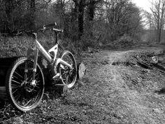 Mountain Cycle San Andreas