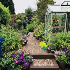 Small Narrow Garden Ideas, Plants, Gardens, Outdoor Gardens, Plant, Garden, House Gardens, Planets