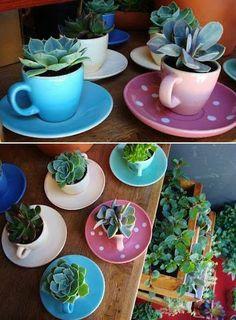 Aprovecha las tazas viejas para preparar bonitos detalles decorativos con suculentas... pinned with Pinvolve - pinvolve.co