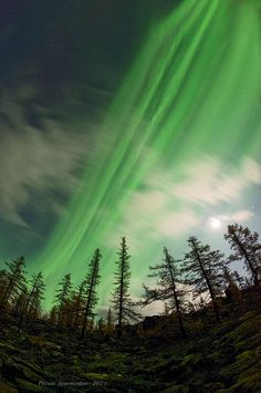 In Russian Siberia in 2011, a powerful solar wind pours thru a fresh crack in our magnetosphere