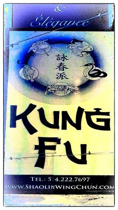 SIGN. Chinatown Montreal Kung Fu, Montreal, Places To Visit, Signs, Stores, City, Collage, Photography, Architecture