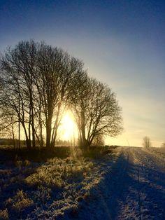 Winter in Småland..