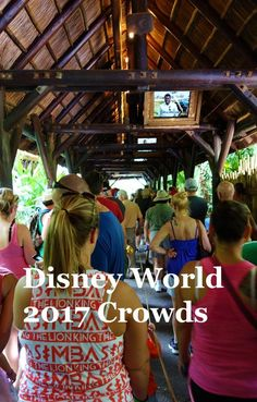If you're planning your visit for 2017, you'll definitely want to read this post on Disney World Crowds in 2017 from yourfirstvisit.net - especially if it's your first visit.  Crowds can determine how much you can do, where you might be able to stay, what dining reservations you'll be able to get and so much more.