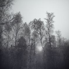 Gris by Jürgen Heckel, via Behance