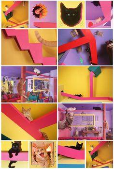 Кошкин дом. Современные тенденции
