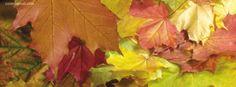 facebook cover Foliage CoverLayout.com