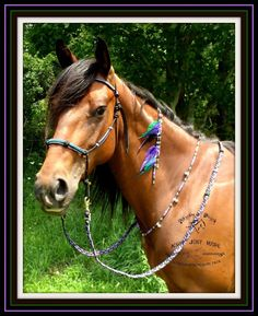 Rhythm-n-Beads natural horsemanship equine rhythm beads bling for horses. Coordinating rope tack by www.facebook.com/knotjustrope