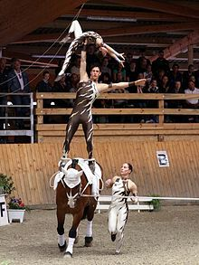 Equestrian vaulting: My DD wants to learn how to do this.