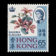 Hong Kong 1972 (Unused) 65c Bauhinia Blakeana