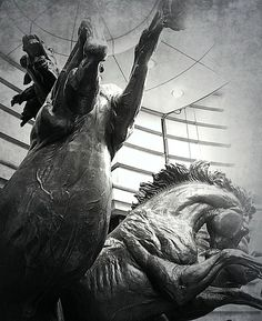 My Horse-ography photo essay for Fine Flu Literary Journal.   http://fineflu.weebly.com/