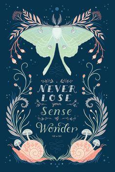 Lovely -- Lisa Perrin