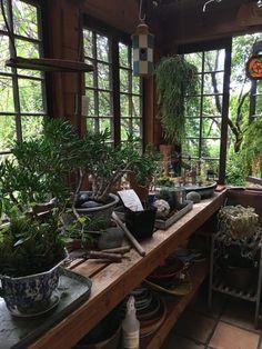 A Gorgeous Garden Rustic Potting Shed Tour