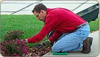 If you want to insure the good health of your plant material then you need a help of beautification crews in Edmonton. A regular watering services are necessary to insure the good health of the plant material. Beautification services can change the entire look of your property. If you want every inch of your property looking pristine then contact with best landscaping services in Edmonton.