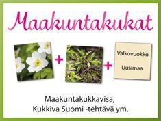 Maakuntakukkavisa, Kukkiva Suomi seinälle -tehtävä #maakunnat #ylli #luonto #kukka #visa #tulostettava #maakuntakukat #ryhmätoiminta #viriketoiminta #taide #suomi #kuvis #kasvioppi Viria, Place Cards, Place Card Holders, Tableware, Frame, Science, Home Decor, Picture Frame, Dinnerware