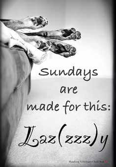 Sundays are made for this ... LAZ(zzz)Y. Hope you take the time to enjoy doing just that!