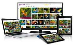 Yahoo Images With Tiled Design, Latest & HQ Images & Getty Images Deal