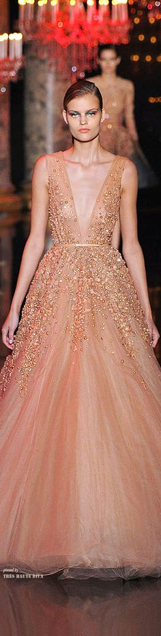 Elie Saab Couture Fall 2014. Nice dress but I hate the way the neckline dips so low