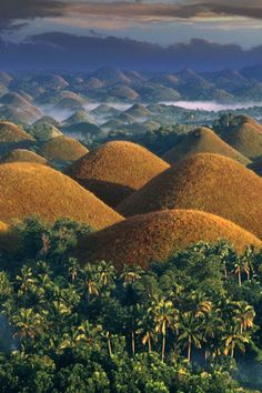 View top-quality stock photos of Philippines Chocolate Hills At Sunrise. Filipino, Travel Around The World, Around The Worlds, Chocolate Hills, Bohol Philippines, Beautiful Places To Travel, Cool Artwork, Amazing Artwork, Vacation Trips