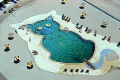 cat shaped swimming pool at the Fontainebleau Hotel, Miami, circa 1955.