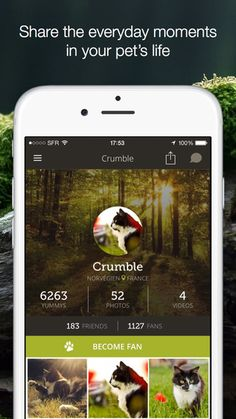Yummypets - Social network for pet owners & pet lovers de Octopepper